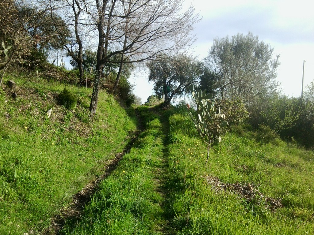 Omignano – Rif. 46 € 65.000,00